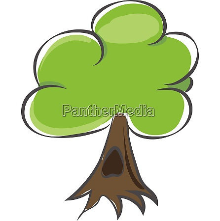 drawing of a treewoody perennial plant