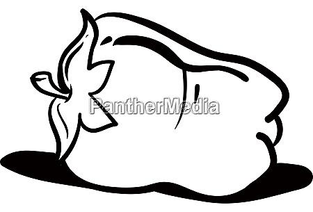 pepper drawing illustration vector on white