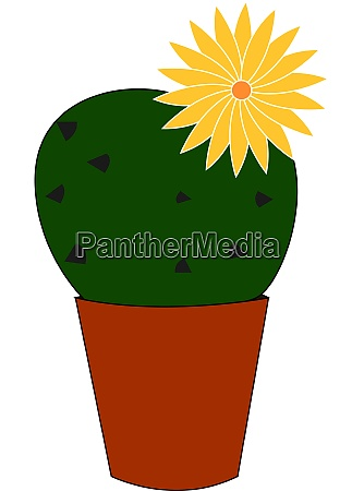 cactus with yellow flower illustration vector