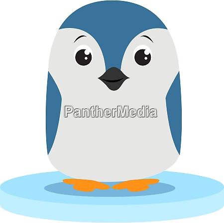 little penguin illustration vector on white