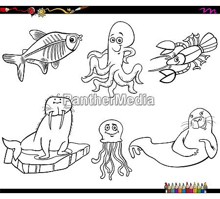 kreskowka morskich zwierzat znakow kolorowanki strona