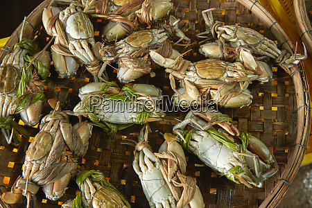 basket of crabs fish market hoi