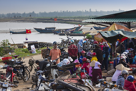 vietnam dmz area quang binh province