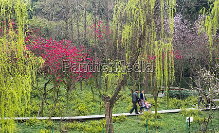 people in the park with spring