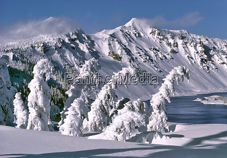 usa oregon crater lake np trees