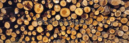 usa oregon bend stacked lodgepole pine