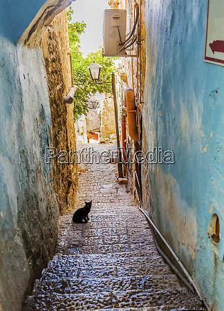 old stone street alleyway black cat