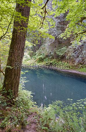 usa washington state lewis river a