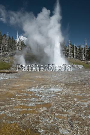 usa wyoming yellowstone national park grand