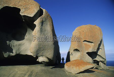 australia kangaroo island flinders chase national
