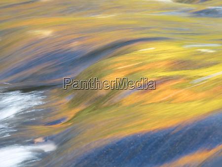 usa michigan upper peninsula trees reflect