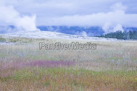 usa wyoming park narodowy yellowstone stary