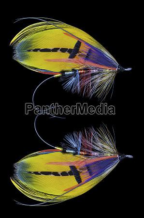 atlantic, salmon, fly, designs, 'shannon' - 27887898
