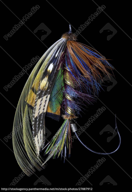 atlantic, salmon, fly, projektuje, odmianę,