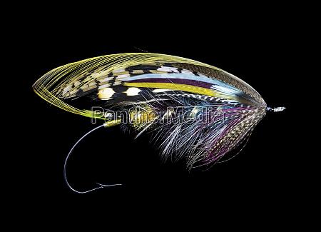 atlantic, salmon, fly, wzory - 27887978