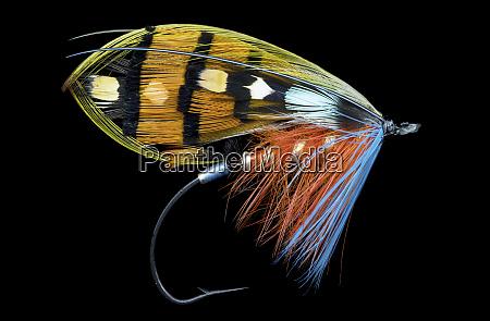 atlantic, salmon, fly, designs - 27888006