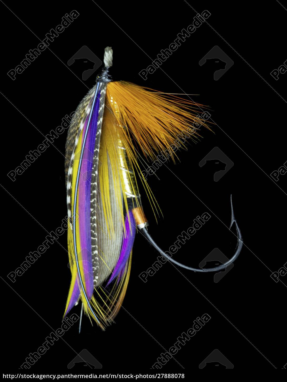 atlantic, salmon, fly, wzoruje, się, na - 27888078