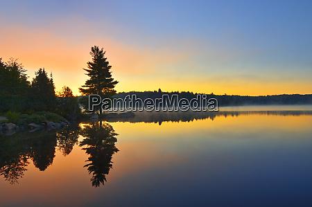 canada ontario algonquin provincial park sunrise