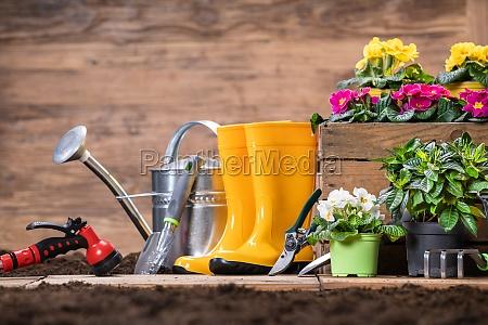 narzedzia ogrodnicze i kwiaty