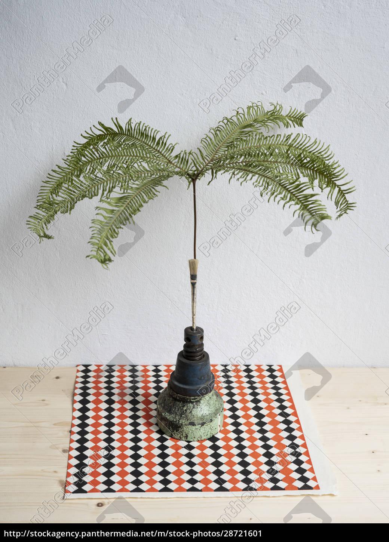 still, life, tropical, plant, in, unique - 28721601