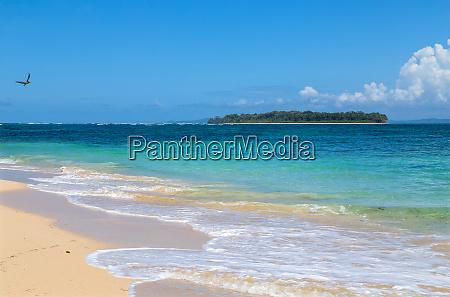 plaża, w, panamie - 28817122