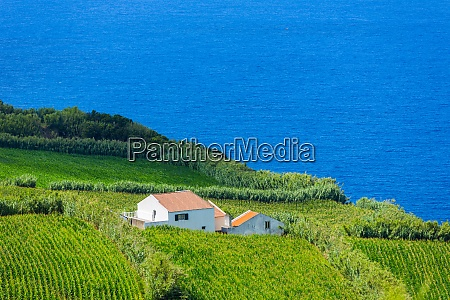 viewpoint, in, sao, miguel - 28935241