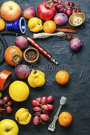 tyton owocowy dla sziszy
