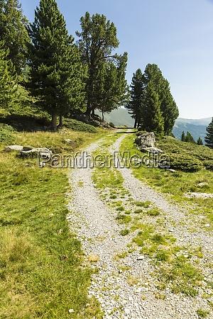Zwirowa droga w europejskich alpach latem