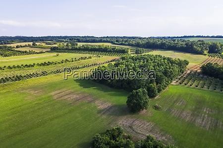 widok drona na zielony krajobraz wiejski