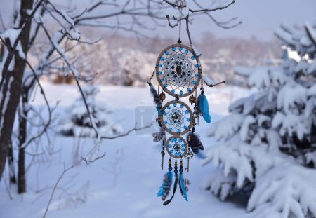 niebieski tlo kolo dekoracja naturalne drzewo