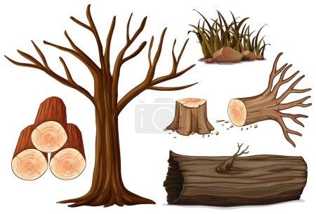 obraz, obiekty, wektor, tłó, graficy, ilustracja - B203713380